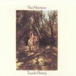 Tupelo Honey - Van Morrison