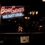 Mr. Natural - Bee Gees