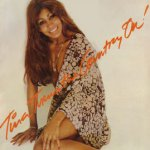 Tina Turns The Country On - Tina Turner