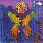 Night Lights Harmony - Four Tops