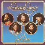 15 Big Ones - Beach Boys