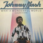 What A Wonderful World - Johnny Nash