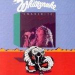 Snakebite - Whitesnake