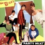 Party Mix! - B-52