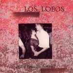 ... And A Time To Dance - Los Lobos