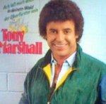 Ach, laß mich doch in deinem Wald der Oberförster sein - Tony Marshall