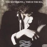 This Is The Sea - Waterboys