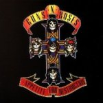Appetite For Destruction - Guns