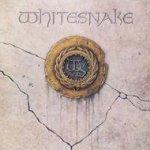 1987 - Whitesnake