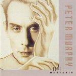 Love Hysteria - Peter Murphy
