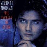 Wie Fackeln im Sturm - Michael Morgan