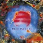 Sense - Lightning Seeds