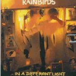 In A Different Light - Rainbirds