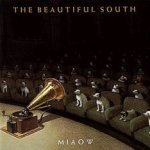Miaow - Beautiful South