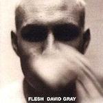 Flesh - David Gray