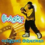 Original Doberman - Shaggy