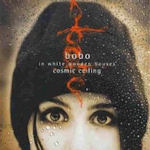 Cosmic Ceiling - Bobo In White Wooden Houses