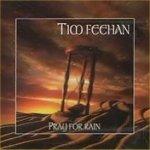 Pray For Rain - Tim Feehan