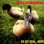 Es ist egal, aber - Tocotronic