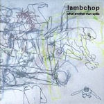 What Another Man Spills - Lambchop