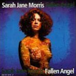 Fallen Angel - Sarah Jane Morris