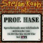 Prof. Hase - Stefan Raab