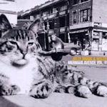 Mermaid Avenue Vol. II - {Billy Bragg} + {Wilco}