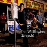 Breach - Wallflowers