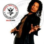 Wildcard - Sananda Maitreya