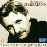 Eine Stunde Ewigkeit - Wolfgang Herrmann