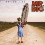 Actual Size - Mr. Big