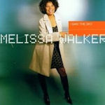 I Saw The Sky - Melissa Walker