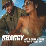 Mr. Lover Lover - The Best Of Shaggy... Part 1 - Shaggy