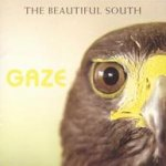 Gaze - Beautiful South