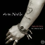 Nature Boy: The Standards Album - Aaron Neville