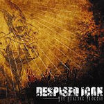 The Healing Process - Despised Icon