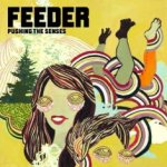 Pushing The Senses - Feeder