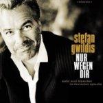 Nur wegen dir - Stefan Gwildis