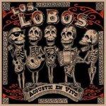 Acoustic En Vivo - Los Lobos