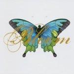Bloom (Remix Album) - Sarah McLachlan