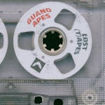 The Lost (T)Apes - Guano Apes