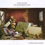 The Destroyed Room - B-Sides And Rarities - Sonic Youth
