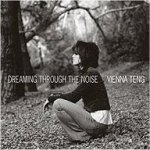 Dreaming Through The Noise - Vienna Teng