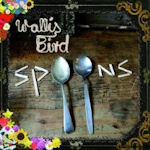 Spoons - Wallis Bird