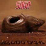 10.000 Days - Saga