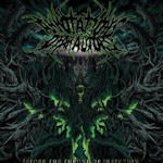 Before The Throne Of Infection - Annotations Of An Autopsy