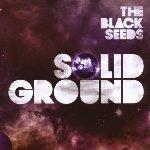 Solid Ground - Black Seeds