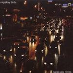 Migratory Birds - Sarah Jane Morris