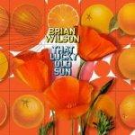 That Lucky Old Sun - Brian Wilson