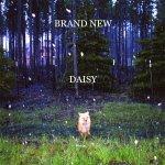 Daisy - Brand New